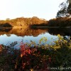 Fall color and still water