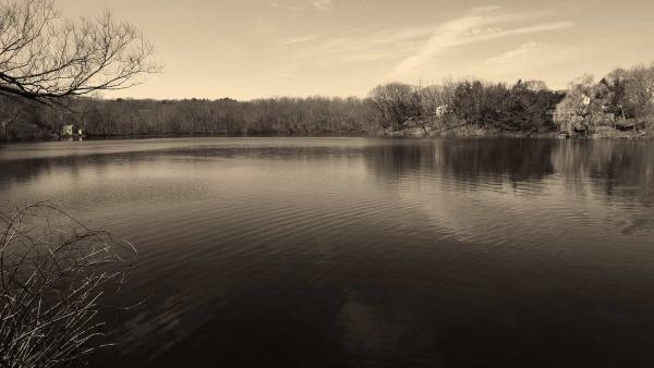 Barny Pond