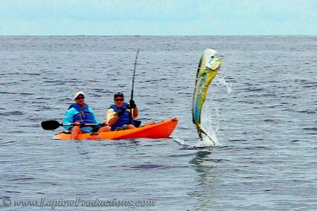 http://www.laptewproductions.com/videos/wp-content/uploads/2012/04/Yak_Dorado.jpg