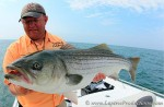 Captain Blain Anderson holds up a cow striped bass