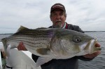 Captain Jim White with a monster shallow water striper held up for the camera