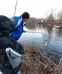 Father steadies the net for another trout